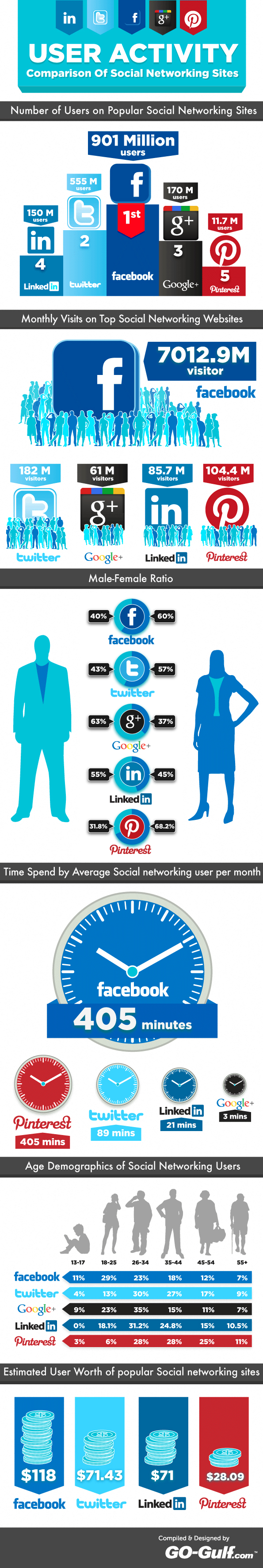 Infographics on Social Networking Users